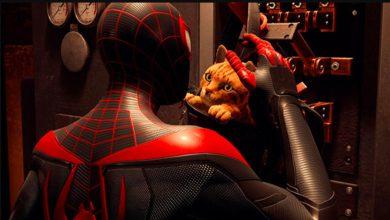 Foto de Spider-Cat revelado em Spider-Man: Miles Morales