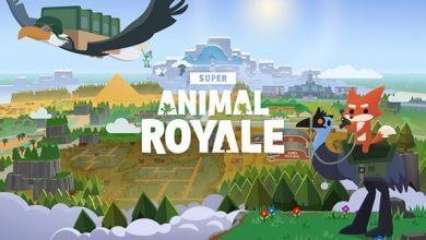 Foto de Análise: Super Animal Royale